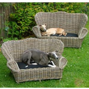 Grey Dog Sofa with Cushion