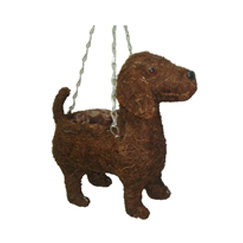 Hanging Dog Basket
